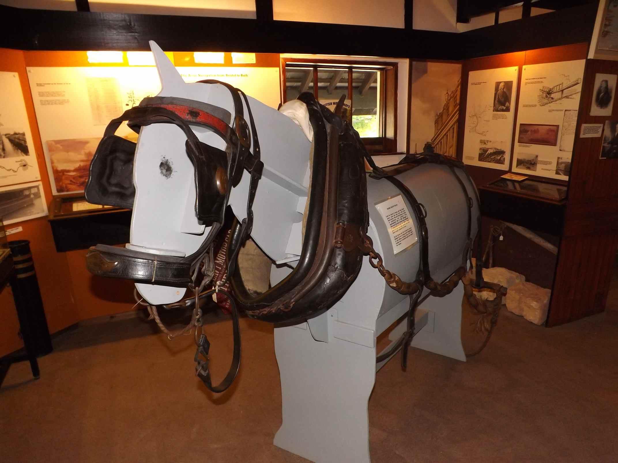 Horse Reigns